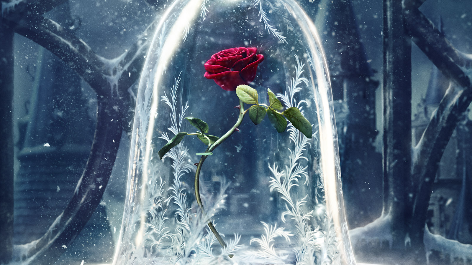 beauty-and-the-beast-poster-rose